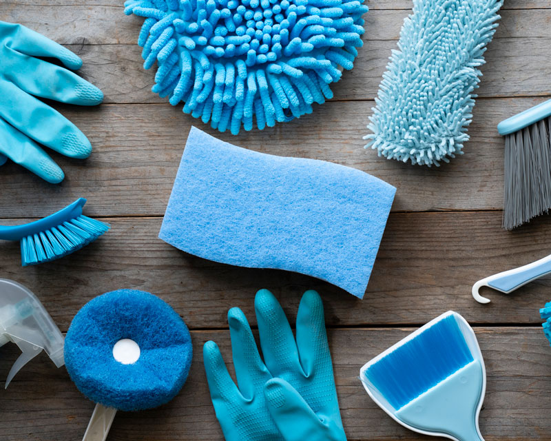 cleaning services, comprehensive mold management, rochester, ny